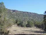 918 Sierra Verde Ranch - Photo 2