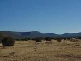 918 Sierra Verde Ranch - Photo 8