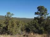 1424 Sierra Verde Ranch - Photo 13