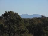 1424 Sierra Verde Ranch - Photo 14