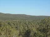 1424 Sierra Verde Ranch - Photo 15