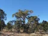 1424 Sierra Verde Ranch - Photo 16