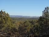 1424 Sierra Verde Ranch - Photo 18