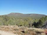 1424 Sierra Verde Ranch - Photo 2