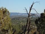 1424 Sierra Verde Ranch - Photo 20