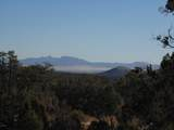 1424 Sierra Verde Ranch - Photo 24