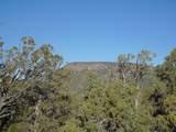 1424 Sierra Verde Ranch - Photo 25