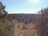 1424 Sierra Verde Ranch - Photo 26