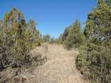 1424 Sierra Verde Ranch - Photo 27