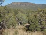 1424 Sierra Verde Ranch - Photo 3