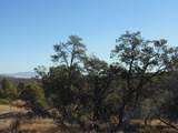 1424 Sierra Verde Ranch - Photo 30