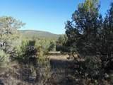 1424 Sierra Verde Ranch - Photo 5