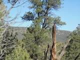 1424 Sierra Verde Ranch - Photo 7