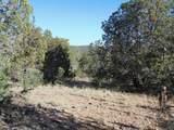1424 Sierra Verde Ranch - Photo 8