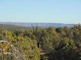 1424 Sierra Verde Ranch - Photo 9