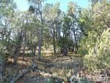 1425 Sierra Verde Ranch - Photo 13