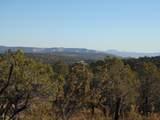 1425 Sierra Verde Ranch - Photo 14
