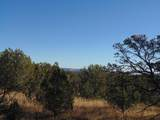 1425 Sierra Verde Ranch - Photo 16
