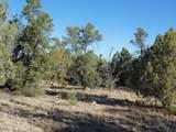 1425 Sierra Verde Ranch - Photo 19
