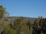 1425 Sierra Verde Ranch - Photo 20