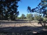 1425 Sierra Verde Ranch - Photo 21