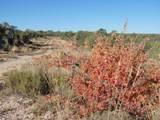 1425 Sierra Verde Ranch - Photo 23