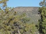 1425 Sierra Verde Ranch - Photo 24