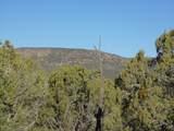 1425 Sierra Verde Ranch - Photo 25