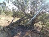 1425 Sierra Verde Ranch - Photo 29