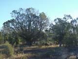 1425 Sierra Verde Ranch - Photo 3