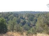 1425 Sierra Verde Ranch - Photo 6