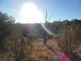 1425 Sierra Verde Ranch - Photo 7