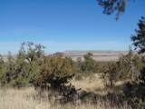 701 Sierra Verde Ranch - Photo 13