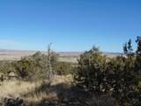 701 Sierra Verde Ranch - Photo 14