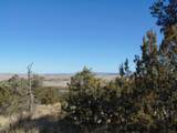 701 Sierra Verde Ranch - Photo 15