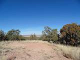 701 Sierra Verde Ranch - Photo 7