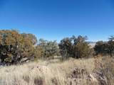 701 Sierra Verde Ranch - Photo 9