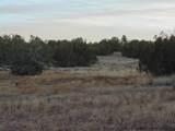 23 Bridge Canyon Country Estates - Photo 16