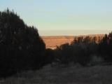 23 Bridge Canyon Country Estates - Photo 8