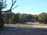 55918 Cabra Lane - Photo 5