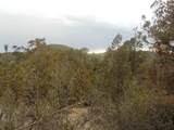 45325 Klinedog Trail - Photo 11
