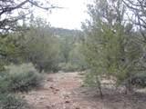45325 Klinedog Trail - Photo 13