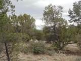 45325 Klinedog Trail - Photo 14