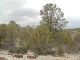 45325 Klinedog Trail - Photo 2