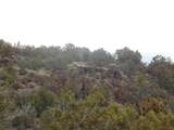 45325 Klinedog Trail - Photo 3