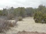 45325 Klinedog Trail - Photo 4