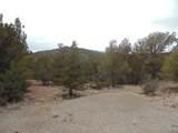 45325 Klinedog Trail - Photo 5
