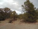 45325 Klinedog Trail - Photo 6