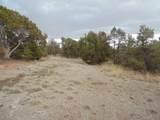 45325 Klinedog Trail - Photo 8