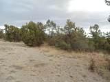 45325 Klinedog Trail - Photo 9